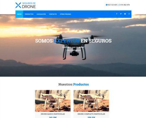 Página web de seguros de drones